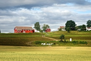 Lots of large farms with very large red barns.