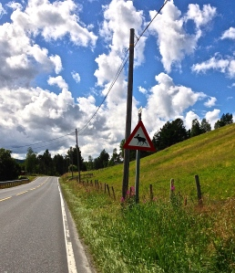 This is the Moose crossing sign, they are everywhere in Norway.