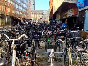 Denmark has the second largest bicycle riders per capita.