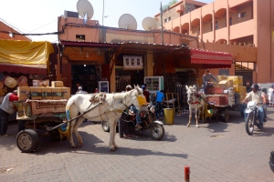 I was appalled when the driver turned down this street to our hotel the night before. This is daytime.... Walk out of our front door and this is what you see. Norm thought it was the best couple of asses he had seen in Morocco...