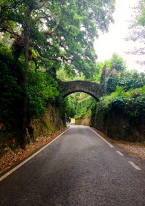The road up to the Pena Palace. Very romantic
