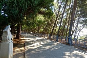 This path is what we walked along to get to the beach. Very nice shaded path all the way.