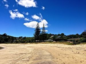Oneroa Bay Beach, great family beach with a park, swings, great area for kids.