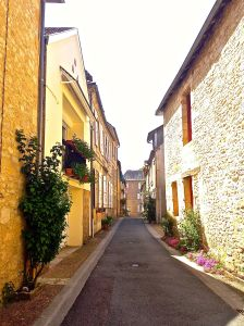 Just a little street we walked by in Montignac.