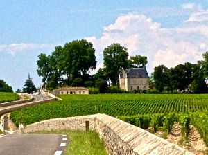 What a beautiful site driving up to Chateau Latour