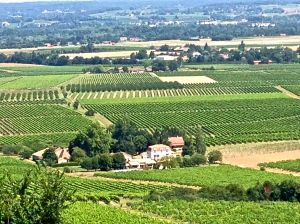 I know you can see Bergerac from here! Gorgeous Views!