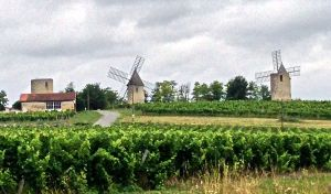 Pretty countryside as we head to St. Emilion!