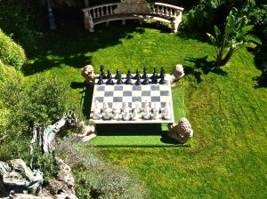 Game of chess, anyone?