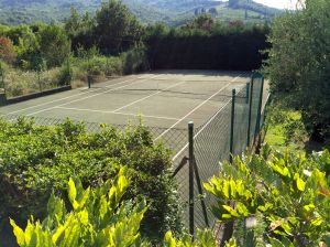 We are thrilled to have a tennis court so we can try to balance our calorie intake to our exercise!  NNNOOOTTT!