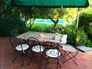 "Getting the table ready for our first ""alfresco"" meal on our patio overlooking our pool."