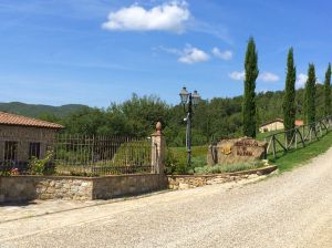 We bought red wine and a wonderful rose wine from this Castellini di Radda vineyard in Radda in Chianti.